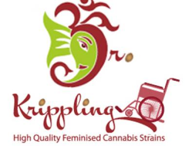 Dr Krippling - Kali and the Chocolate Factory cannabis seed