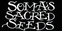 Soma Seeds - Soma Salad cannabis seeds
