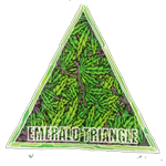 Seeds from Emerald Triangle