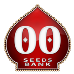 Seeds from OO Seeds