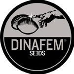 Seeds from Dinafem