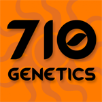 Seeds from 710 Genetics