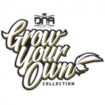Seeds from DNA Genetics - GYO Collection