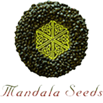 Seeds from Mandala Seeds