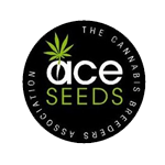 Seeds from Ace Seeds