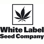 Seeds from White Label Seeds