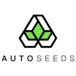 Seeds from Auto Seeds