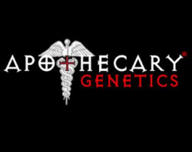 Apothecary Genetics - Razzberry OG cannabis seed