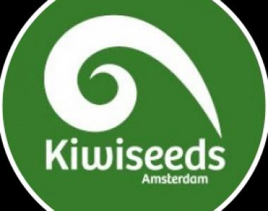 Kiwi Seeds - Outdoor Mix cannabis seed