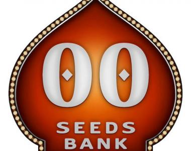 OO Seeds - Auto California Kush cannabis seed