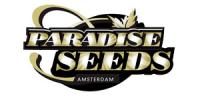 Paradise Seeds - Auto Mix Pack 2 cannabis seeds